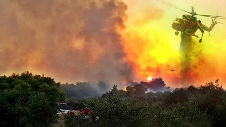 Καπάκης: Η φωτιά στην Κινέτα έχει χαρακτηριστικά πυρκαγιών του 2007