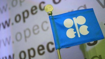Ο ΟΠΕΚ προειδοποιεί –  Το 2019 θα υπάρξει πλεονάζουσα προσφορά πετρελαίου