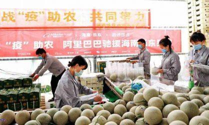 Κίνα: Παγκόσμια επισιτιστική κρίση στον πλανήτη, βλέπει αξιωματούχος με τυχόν νέα έξαρση Covid-19