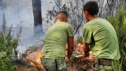 Τα Βαλκάνια δοκιμάζονται από τις φωτιές – Ένας νεκρός στην Αλβανία